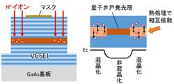 research_image_miyamoto2015.jpg