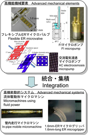 research_image_yoshida2015a.jpg