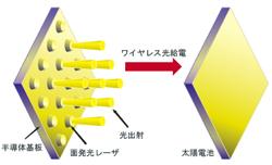 research_image_miyamoto2015b.jpg