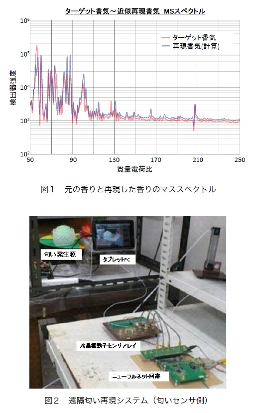 Nakamoto_NewsJapan.jpg
