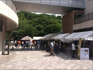 suzu2010A.jpg